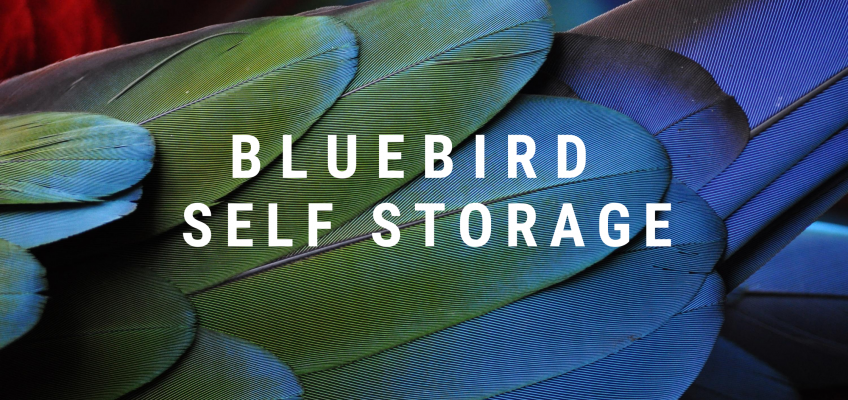 Bluebird Self Storage – Investor Update